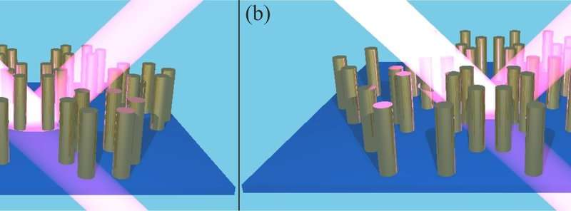 Scientists develop topological defect detection method