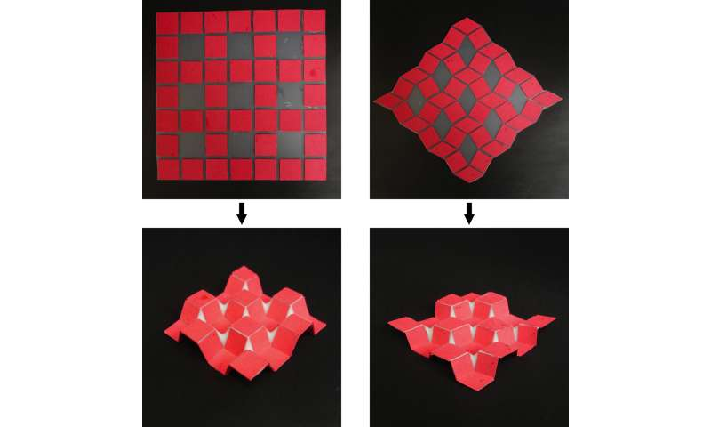New technique uses templates to guide self-folding 3D structures