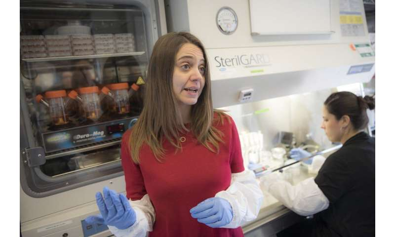 Neuroscientist sees disease-fighting potential in brain organoids