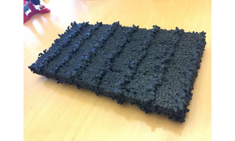 Scientists develop sugar-coated nanosheets to selectively target pathogens