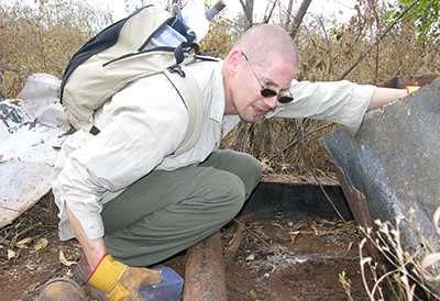 Australia has a new venomous snake – and it may already be threatened