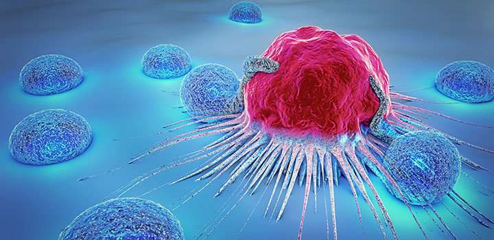 Research could help fine-tune cancer treatment