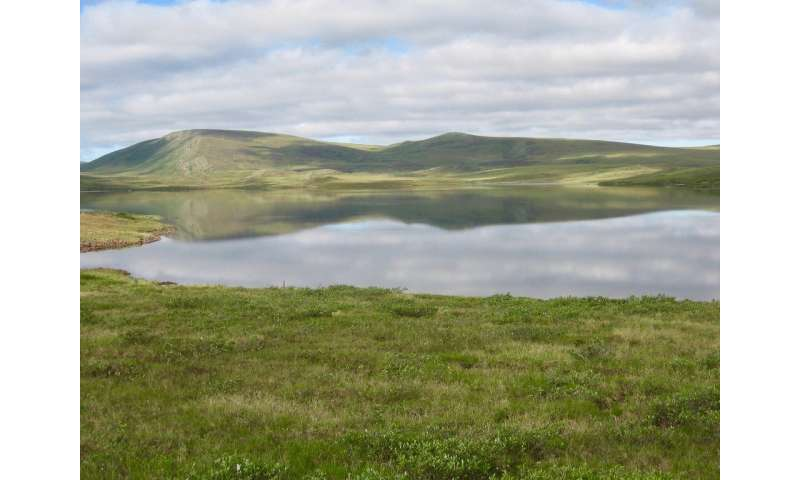 Team discovers a significant role for nitrate in the Arctic landscape