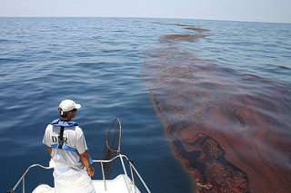 What's the value of lost recreation days from the Deepwater Horizon oil spill?