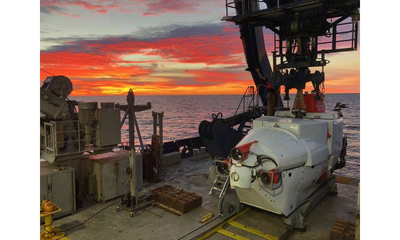 The newly discovered deep-water microbes gobble up greenhouse gases and perhaps also oil spills