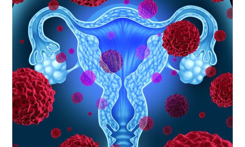 Understanding drug resistance in ovarian cancer