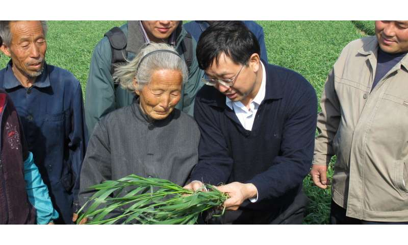 Agricultural sustainability project reached 20.9 million smallholder farmers across China