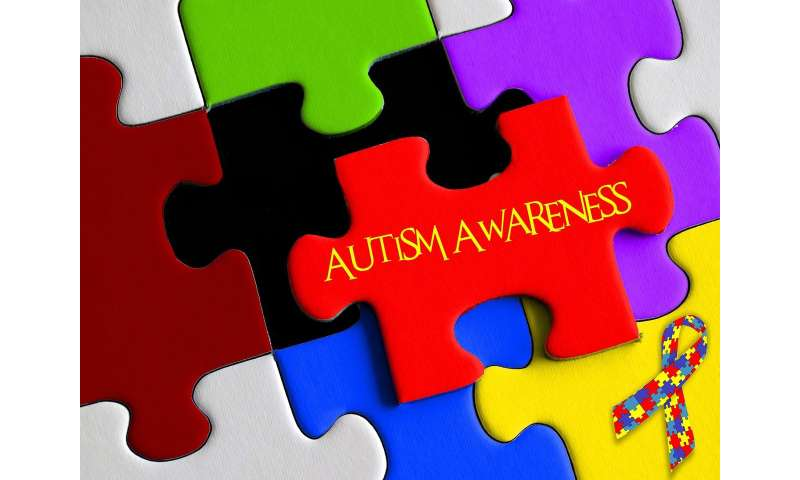 Problems With Attention Not Autism >> Some Children Can Recover From Autism But Problems Often Remain