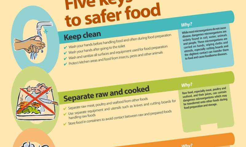 Chemotherapy patients are at risk from poor food safety practices at home