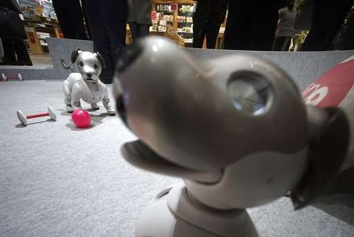 Don't want to bother with cat litter? Japan offers robots