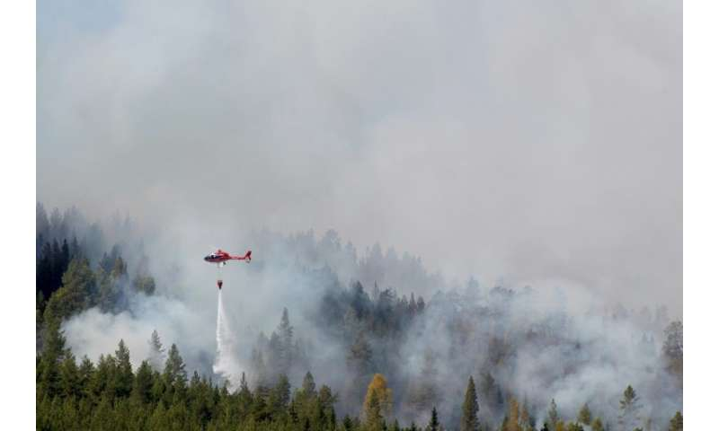 Firefighters use helicopters to fight wildfires in Sweden as the hot dry European weather continues
