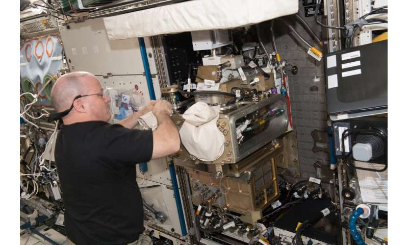 Investigation seeks to create self-assembling materials