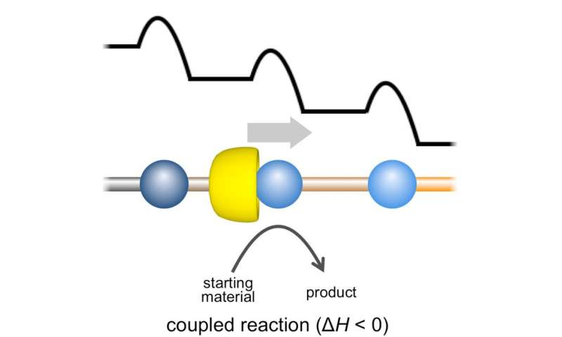 Molecular machine exploits motion in a single direction