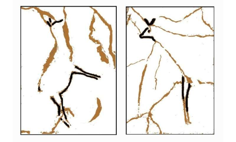 Warning signs—how early humans first began to paint animals