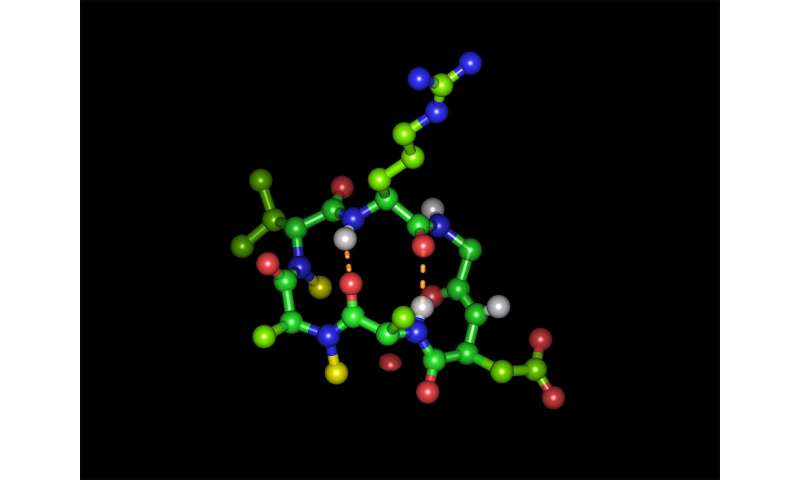 Breakthrough for peptide medication