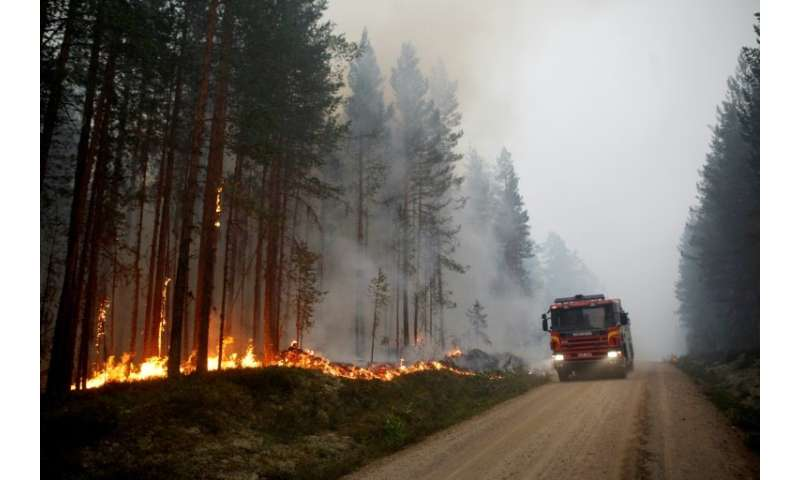 Firefighters on Sunday were battling around 50 wildfires in Sweden after an unprecedented drought in the region