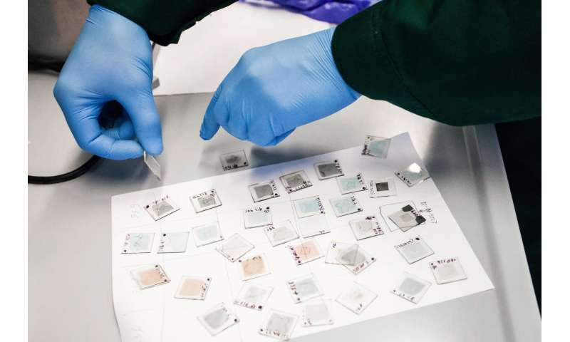 Lithuanian scientists' approach to perovskite solar cells -- cheaper production and high efficiency