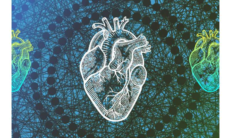New algorithm more accurately predicts life expectancy after heart failure