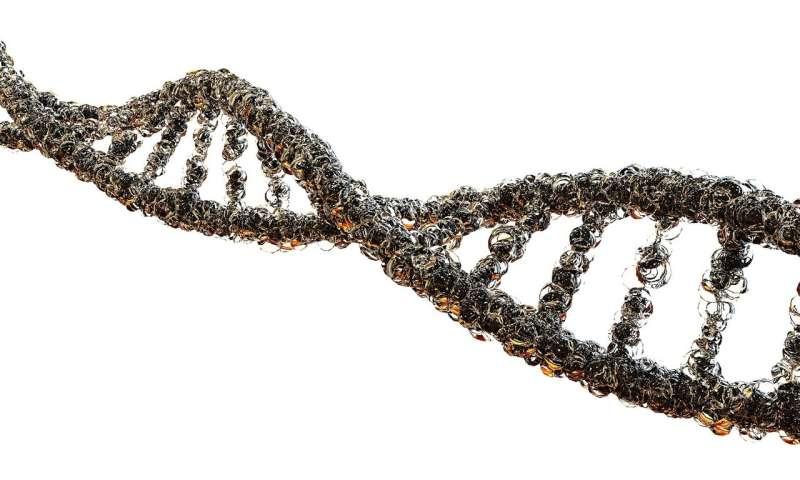 Newly discovered CRISPR mechanism may prevent dangerous errors