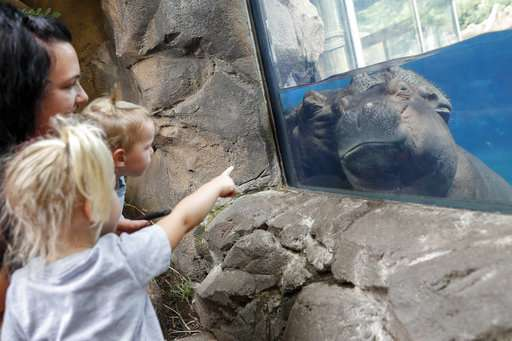 Professor Fiona? Famed baby hippo an educational force
