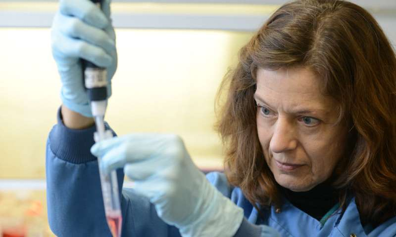 Researchers modify common flu virus to attack pancreatic cancer