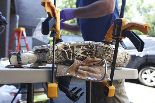 Seized ivory probed for clues that could help save elephants
