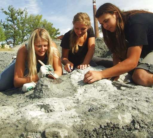 Scientists find remains of huge ancient herbivore