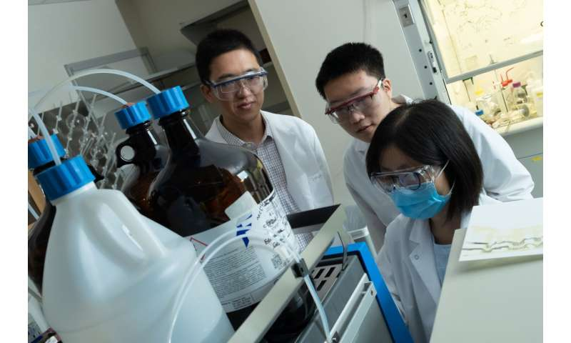 Scientists develop method to quickly enhance immune-system proteins