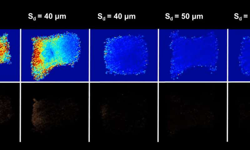 Microbeads allow ultrasonic waves to stimulate cells more safely