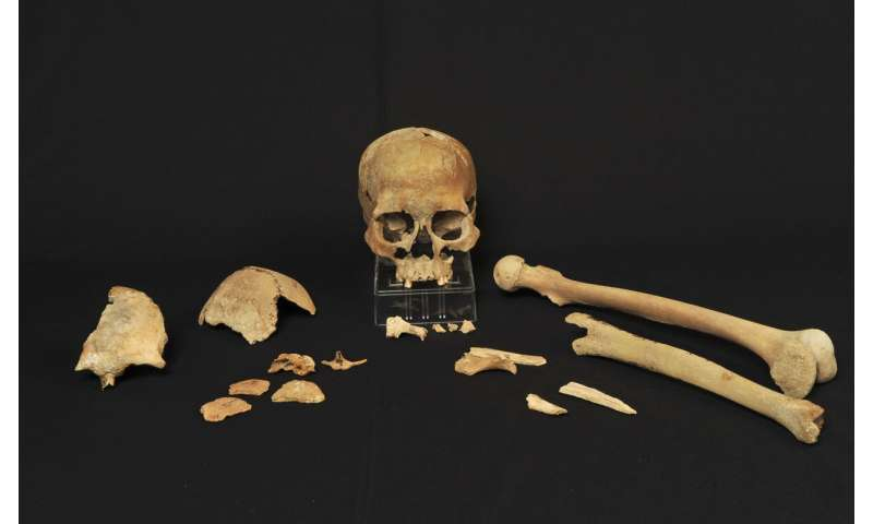 Genomic data suggest two main migrations into Scandinavia after the last ice age
