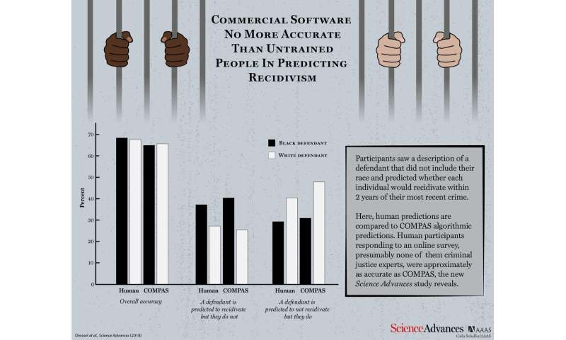 Court software may be no more accurate than web survey takers in predicting criminal risk