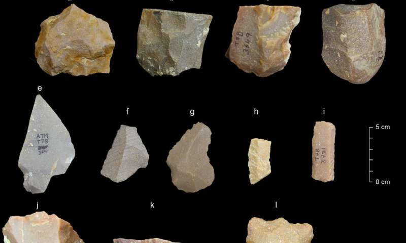 Stone tools in India suggest earlier human exit from Africa
