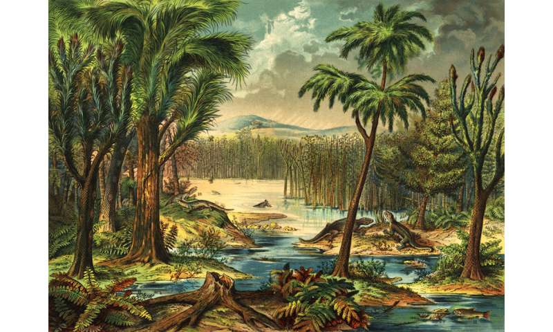 Rainforest collapse 307 million years ago impacted the evolution of early land vertebrates