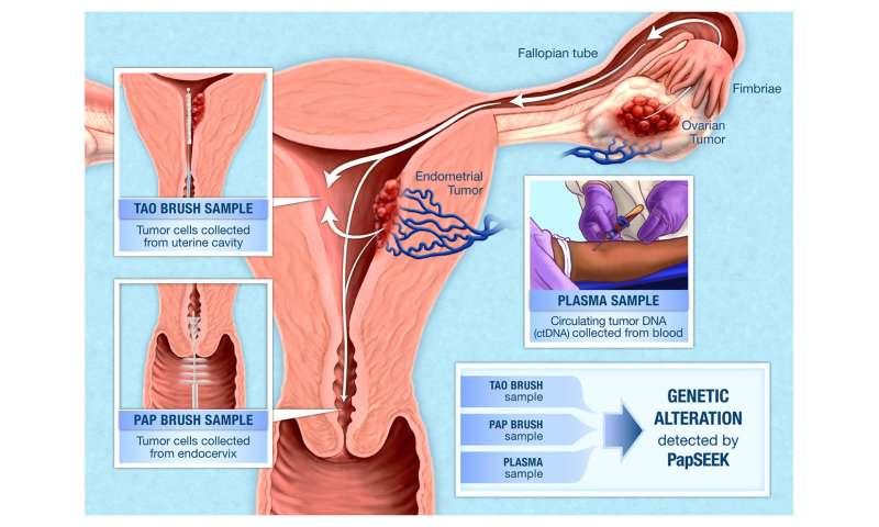 Could a pap test spot more than just cervical cancer?