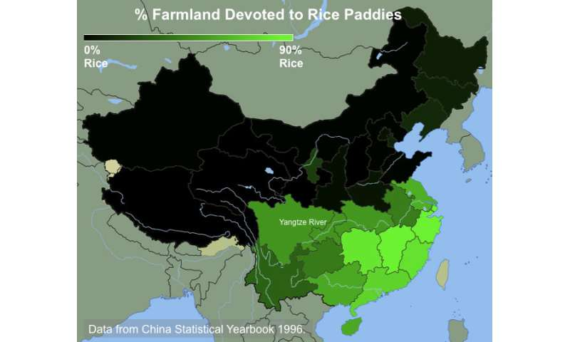 Behavioral differences between Northern v. Southern Chinese linked to wheat v. rice farming, study shows