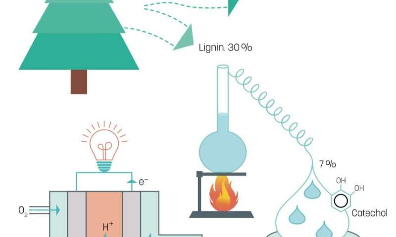 Lignin – a supergreen fuel for fuel cells