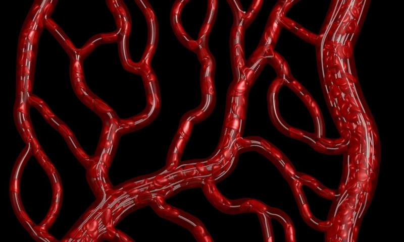The vessel not taken: Understanding disproportionate blood flow