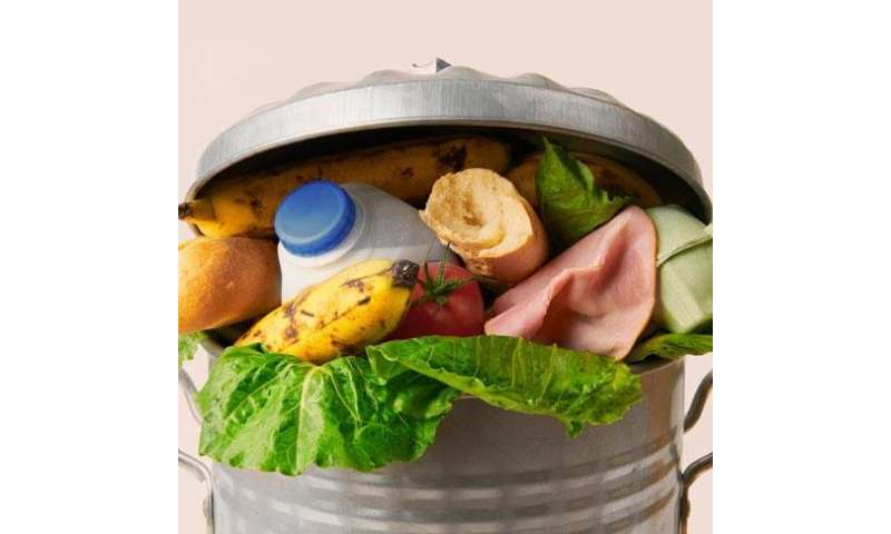 Less food wasted in South Africa than in Europe