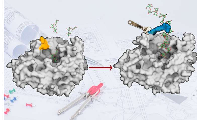 New technology for enzyme design