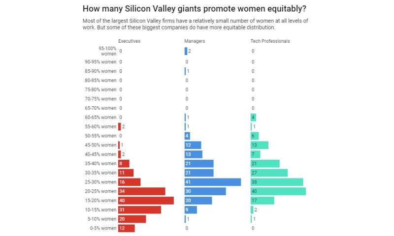 Searching for diversity in Silicon Valley tech firms – and finding some