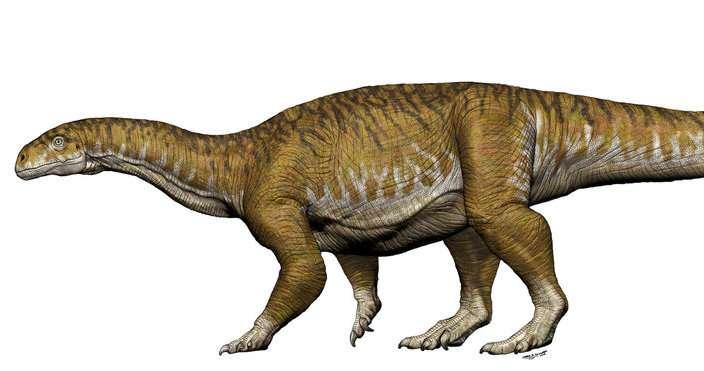 Giant dinosaur bones get archeologists rethinking Triassic period