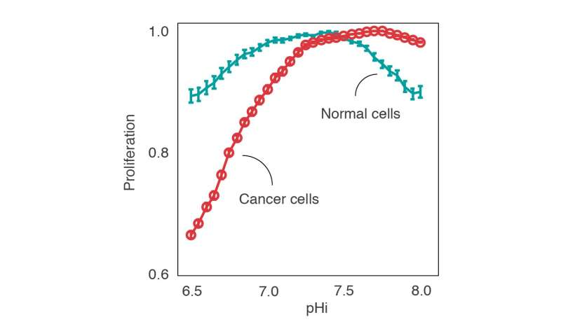 Acidic pH—the weakness of cancer cells