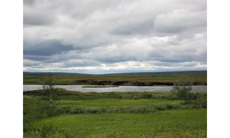 Wetlands are key for accurate greenhouse gas measurements in the Arctic