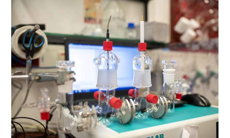 A protective shield for sensitive enzymes in biofuel cells