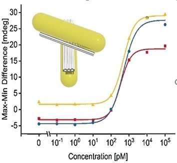 Viral RNA sensing