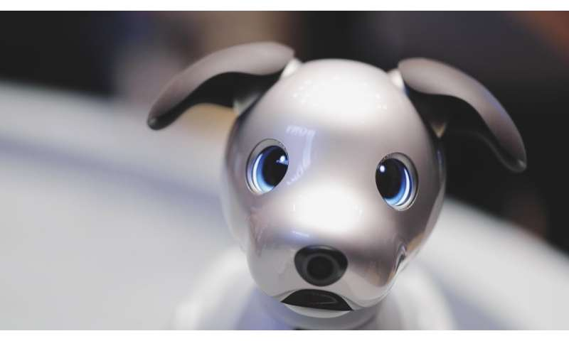 Sony's aibo robotic dog can sit, fetch and learn what its owner likes