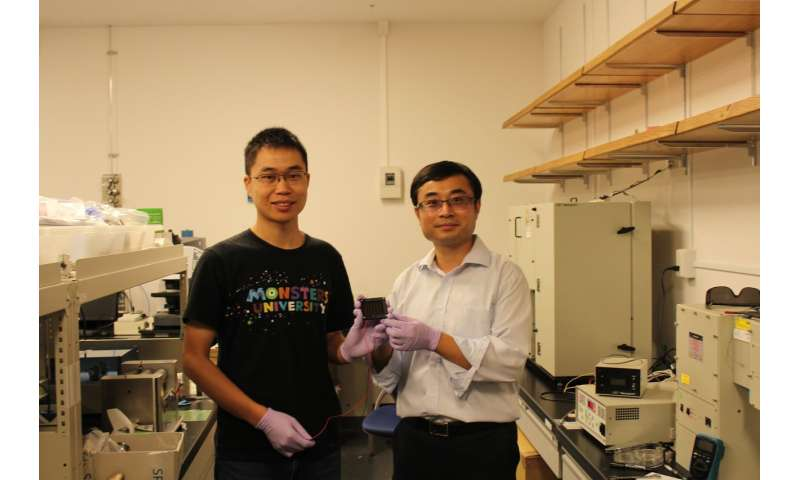 Perovskite solar cells leap toward commercialization
