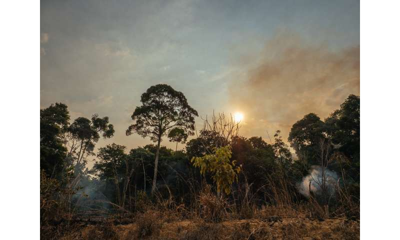 Carbon emissions from Amazonian forest fires up to four times worse than feared