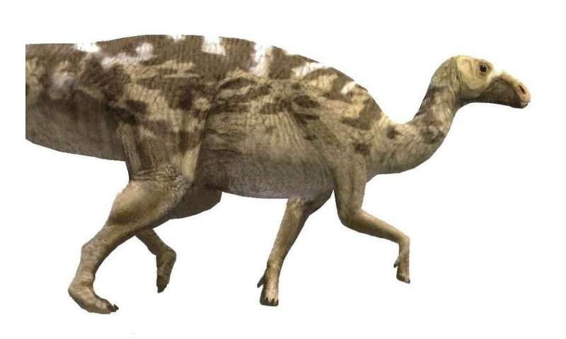 Most complete study on Europe's greatest hadrosaur site published