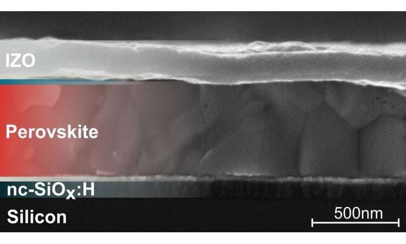 New records in perovskite-silicon tandem solar cells through improved light management